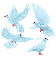 White doves on white background vector image
