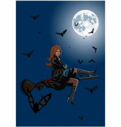 beautiful witch sitting on broom vector image vector image