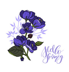 beautiful bouquet with viola and leaves vector image