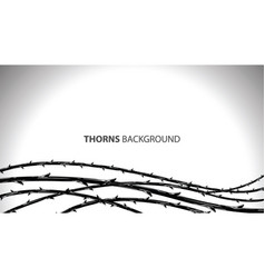blackthorn branches with thorns stylish background vector image