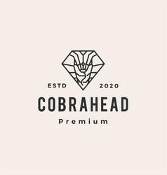 cobra in diamond shape hipster vintage logo icon vector image