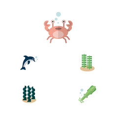 Flat icon marine set playful fish cancer alga vector