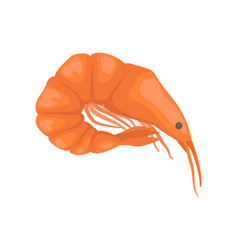 flat icon of raw or boiled shrimp with vector image
