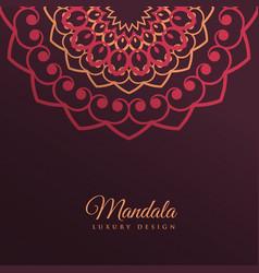 mandala decoration art background design vector image