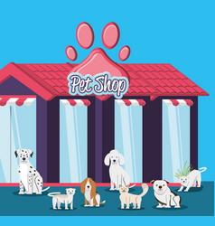 pet shop veterinary elements vector image