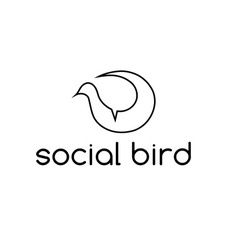 social bird concept design template vector image