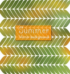 Summer background design vector image