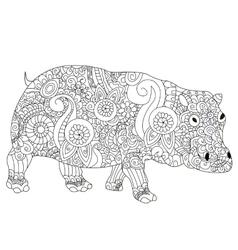 Hippopotamus coloring book for adults vector
