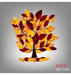 autumn tree with colorful leaves vector image
