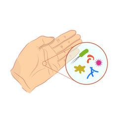 bacteria and viruses on human skin vector image