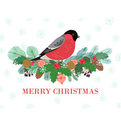 bird winter banner christmas forest bullfinch on vector image