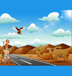 boy explorer with many animal in the sunny desert vector image