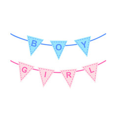Bunting for baby shower or gender reveal party vector