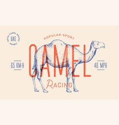 Camel template label vintage retro print vector