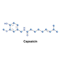 capsaicin is an active component of chili vector image