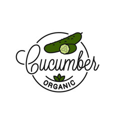 cucumber vegetable logo round linear slice vector image