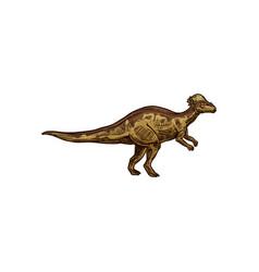 Dinosaur t-rex isolated raptor hand drawn sketch vector