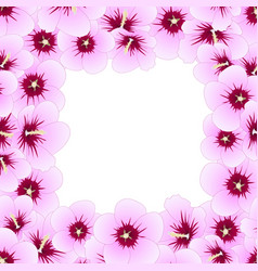 hibiscus syriacus - rose of sharon border vector image
