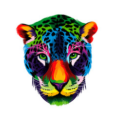 jaguar head portrait from multicolored paints vector image