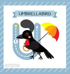 Letter u uppercase tracing umbrellabird vector
