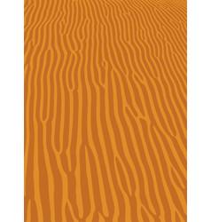 sand ripple vector image