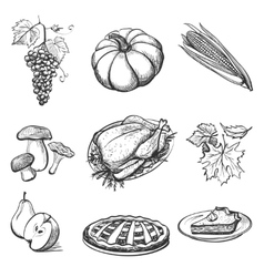 set hand drawn thanksgiving attributes vector image