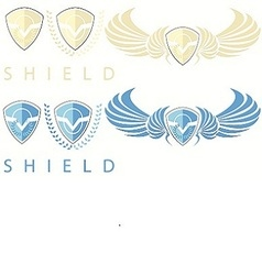Shields vector