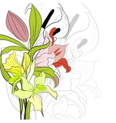 spring background with lily flowers vector image