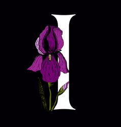 letter i with iris flower vector image