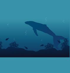 big whale on ocean landscape silhouette vector image