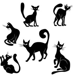Black cat icon silhouette collection vector
