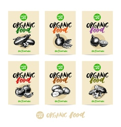 Hand drawn vegetables sale tag banners 100 natural vector image