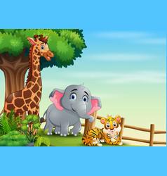 happy wild animals on hill vector image