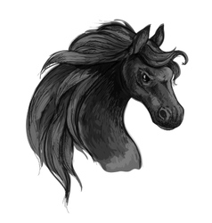 Horse art portrait Mustang with raging eyes vector