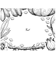 hand drawn frame of fresh fruits on white backgrou vector image