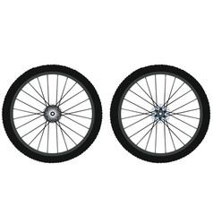 bicycle wheels vector image vector image
