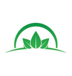 circle leaf ecology logo vector image vector image
