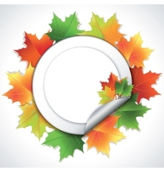 Stickers with colorful maple leaves on white vector image vector image