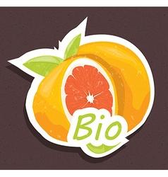 Bio orange tag vector image vector image