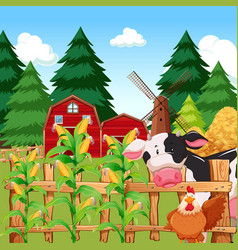 A corn farm with animals vector