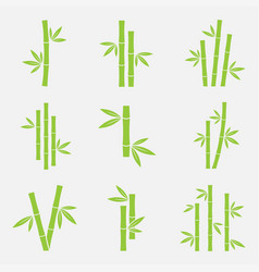 Bamboo icon set vector