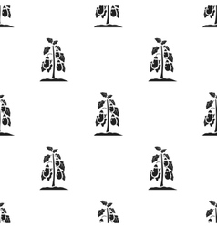 Eggplant icon in black style isolated on white vector