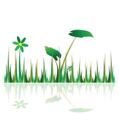 grass green with flower vector image