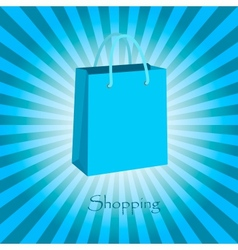 Shopping posters vector image