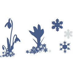 snowdrop and snowflakes group of objects isolated vector image