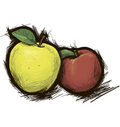 Two apples red and yellow vector