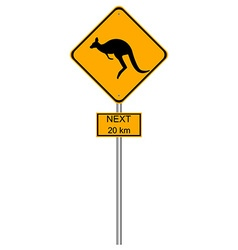 Yellow kangaroos roadsigns vector