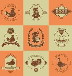 Set of poultry farm logo emblem Chicken turkey vector image vector image