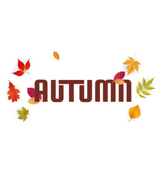 autumn falling leaves white background imag vector image