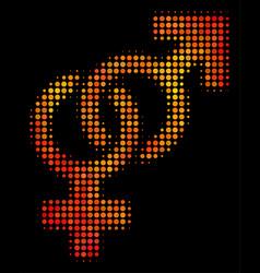 bright dotted heterosexual symbol icon vector image